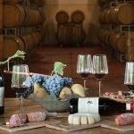Degustazione vini e prodotti tipici delle Langhe - La Rosa nel borgo